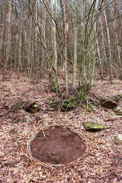 "April 2016,  ""Kreis""   Freigeräumte Stelle im Pfälzer Wald bei Hinterweidenthal."