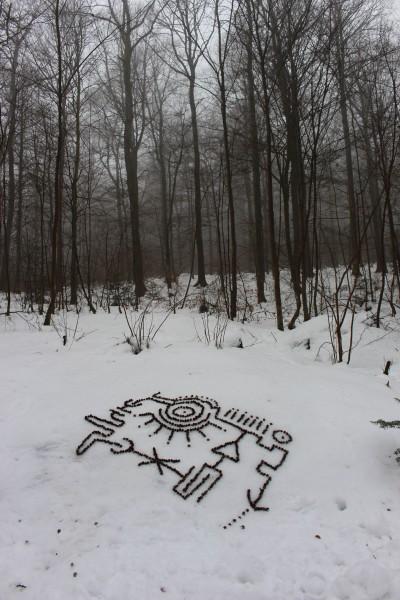 """Februar 2017  """"Plan""""  Hülsen von Bucheckern im Schnee im Tettenbusch bei Prüm/Eifel."""