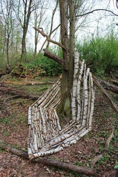 """März 2017,  """"Eine ganze Birke""""  Birkenfundholz im Wald bei Saarbrücken-Rodenhof."""