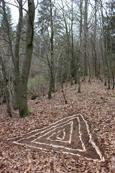 """März 2017,  """"Landeplatz""""  Fasern von Totholz auf freigeräumter Stelle im Tettenbusch bei Prüm-Eifel."""