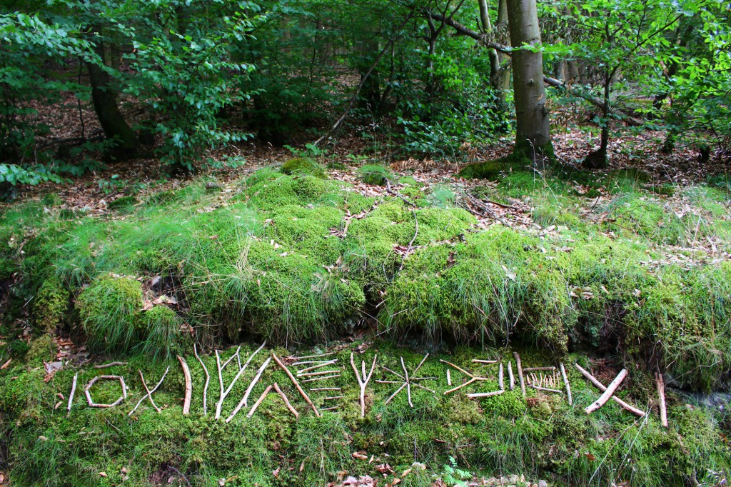 "Juli 2013,  ""Geheime Botschaft am Wegesrand"" Fundhölzer im Wald bei Saarhölzbach (Saar)"