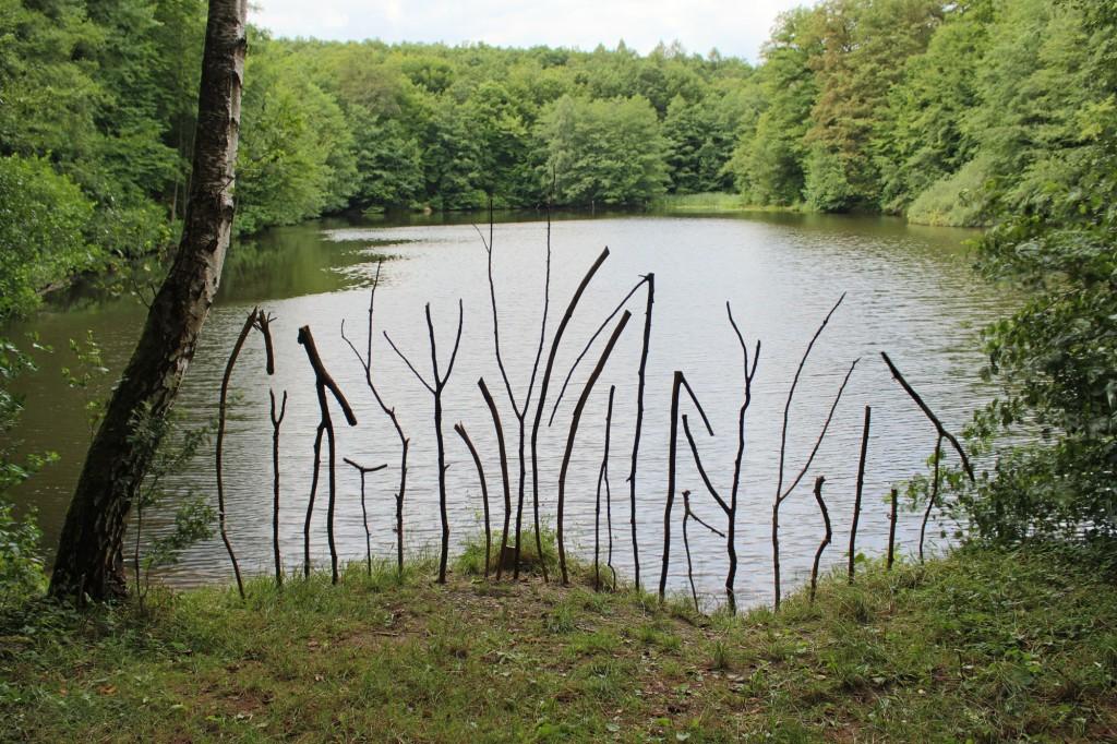 """August 2013,  """"Uferstelen"""" Fundhölzer an einem Weiher im  Saarbrücker Urwald"""