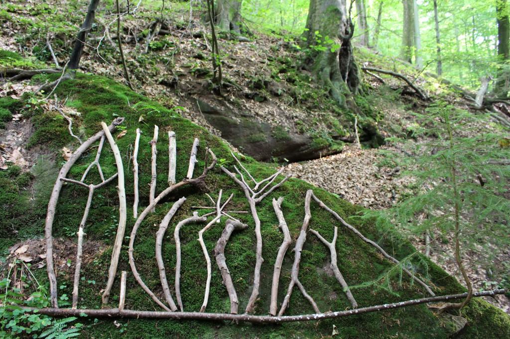 """September 2013,   """"Ornament""""  Fundhölzer auf einem bemoostem  Felsen in der Guldenschlucht bei Einöd (Saar)"""