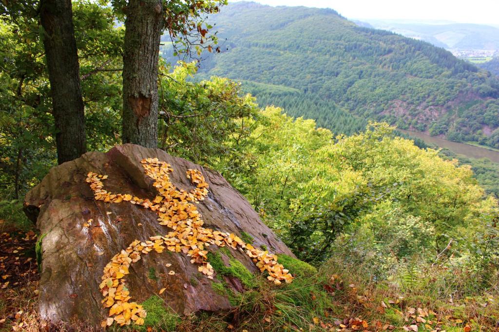 """September 2013,  """"Felszeichnung""""  herbstlich gefärbtes Birkenlaub auf  einem Felsen hoch über der Kleinen Saarschleife."""