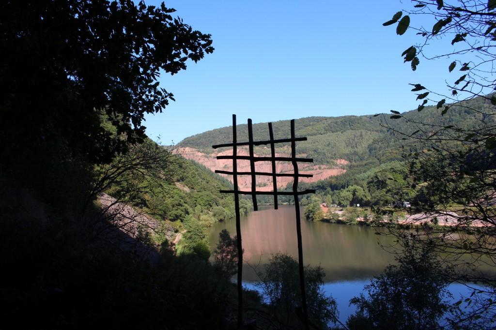 """September 2013,   """"Wundpflaster""""  Fundhölzer am Saarufer bei Taben"""