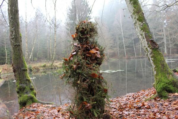 """Dezember 2013,  """"Ein Männlein steht im Walde""""  Fichtenzweige an  Waldweiher zwichen Türkismühle und Nohfelden (Nahe)"""