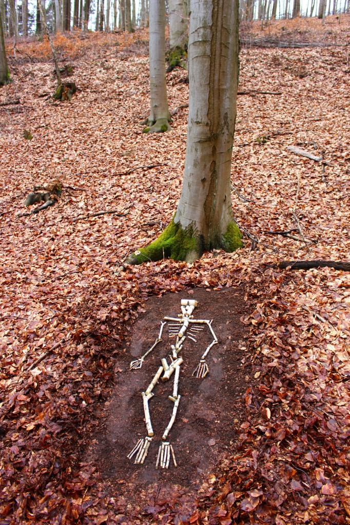 """Februar 2014 ,  """"Was bleibt?""""   Birkenfundhlz Im Wald bei Türkismühle a.d. Nahe"""