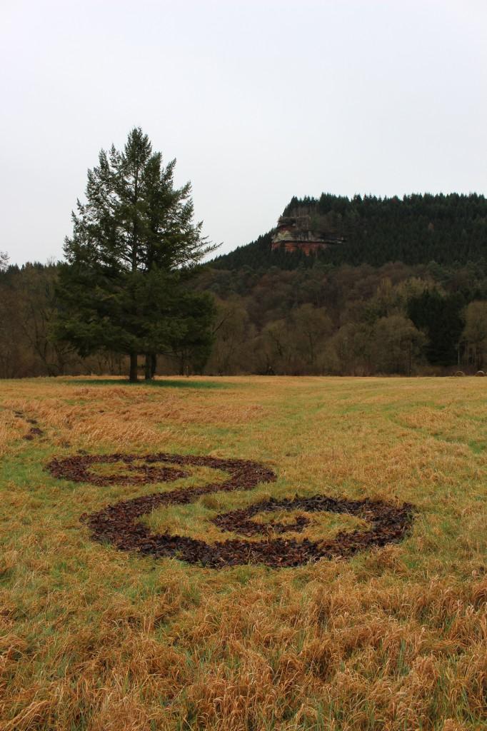 """Februar 2014,    """"Doppelspirale""""   Verrottetes Laub auf vergilbtem Gras an          der Geiersley an der Kyll zwischen Kordel und Trier/Ehrang"""
