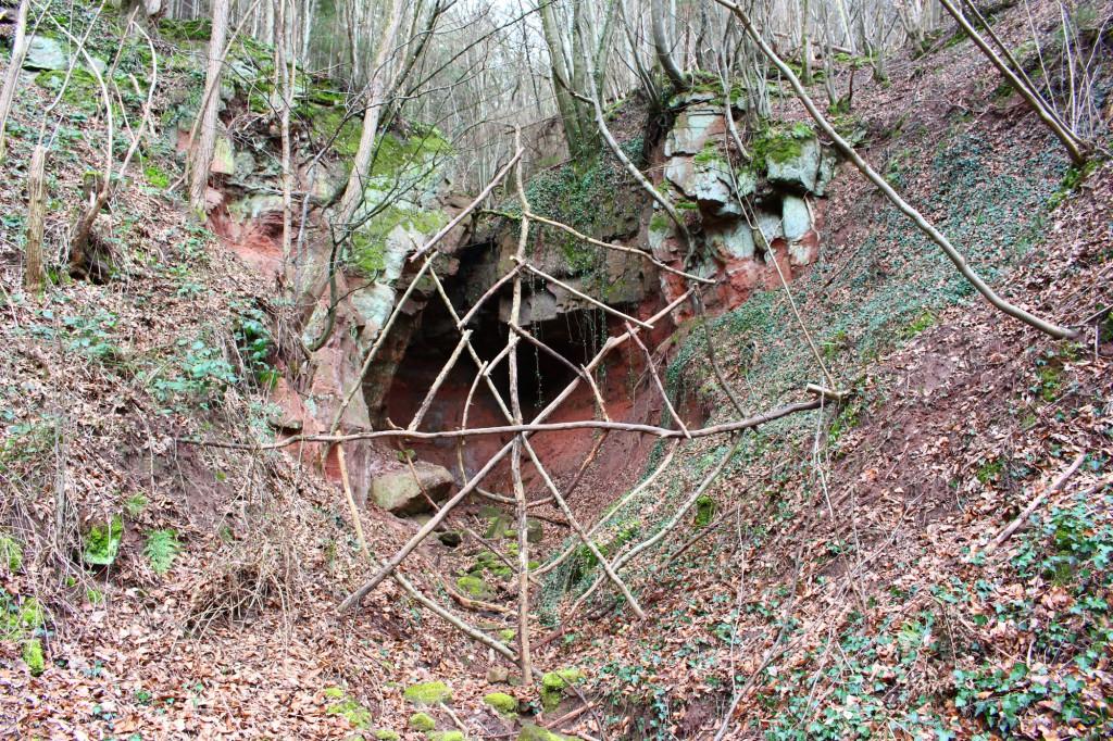 """März 2014,     """"Spinnennetz""""   Fundhölzer im Kylltal bei Auw"""