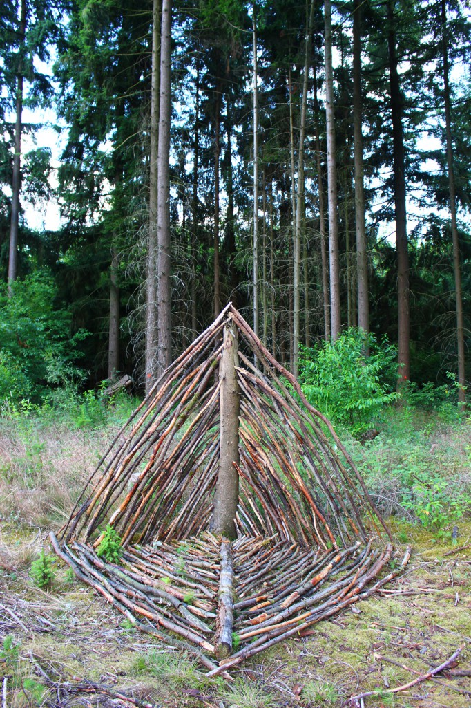 "Juli 2014 ""Doppeldreieck"" Fundholz im Wald bei Kirkel (Saar)"