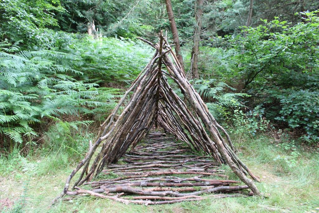 """Juli 2014,   """"Dreieck mit Tiefgang""""  Fundholz im Wald bei Losheim am See  (Saar)"""