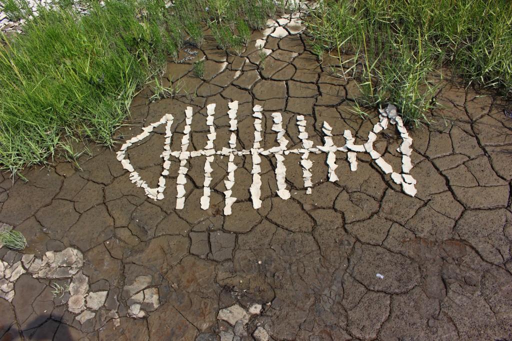 """August 2014,   """"Fischskelett""""   Watt-Schlick in unterschiedlichen Trocknungszuständen  in den Salzwiesen bei Norddeich Ostfriesland"""