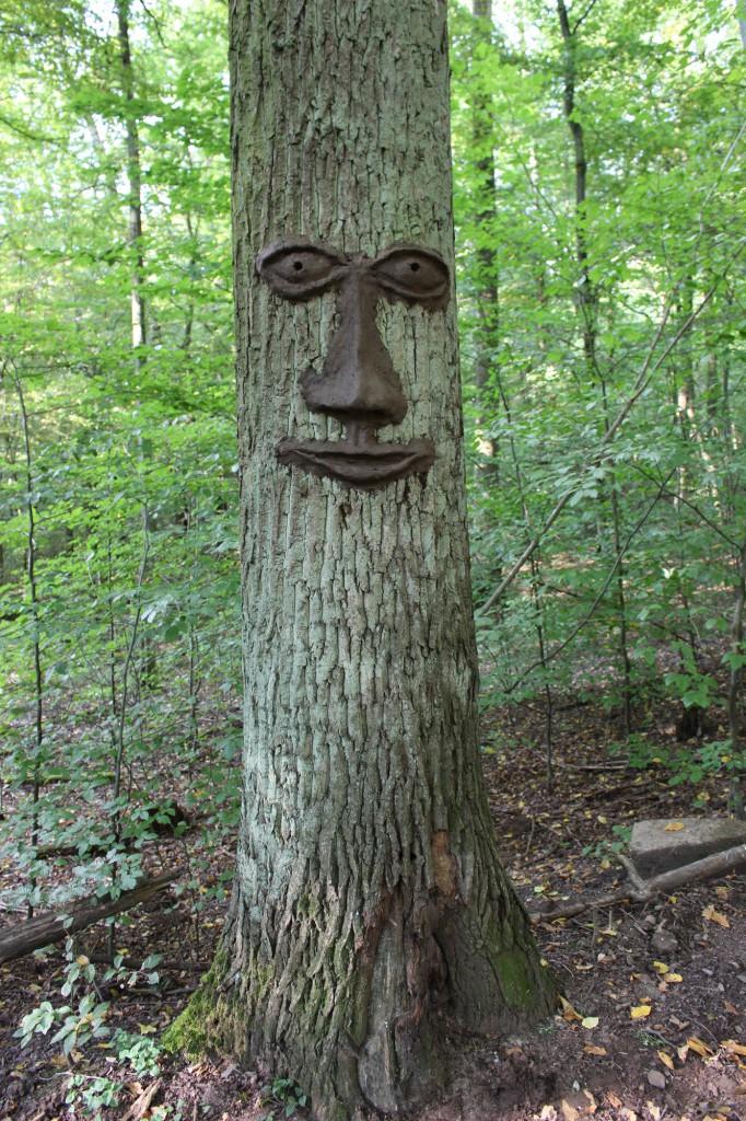 """September 2014,   """"Baumgesicht""""   Lehm auf einem Eichenbaum im Wald   bei Saarbrücken"""